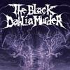 Bild zur News The Black Dahlia Murder